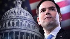 Marco Rubio gana la reelección al Senado en Florida